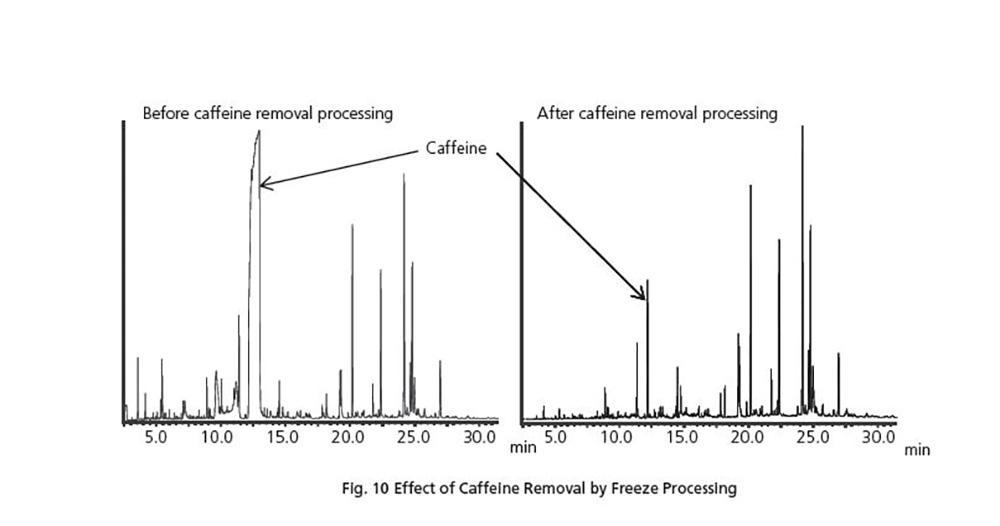 حذف کافئین از چای سبز با روش انجماد