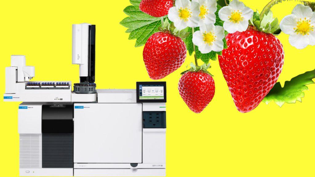 آنالیز سموم دفع آفات در توت فرنگی با دستگاه GCMS
